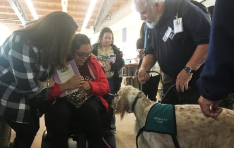 Reading Therapy Dogs visit Armijo library