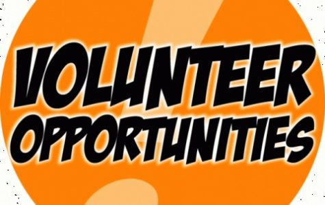 Looking for Volunteer Opportunities?