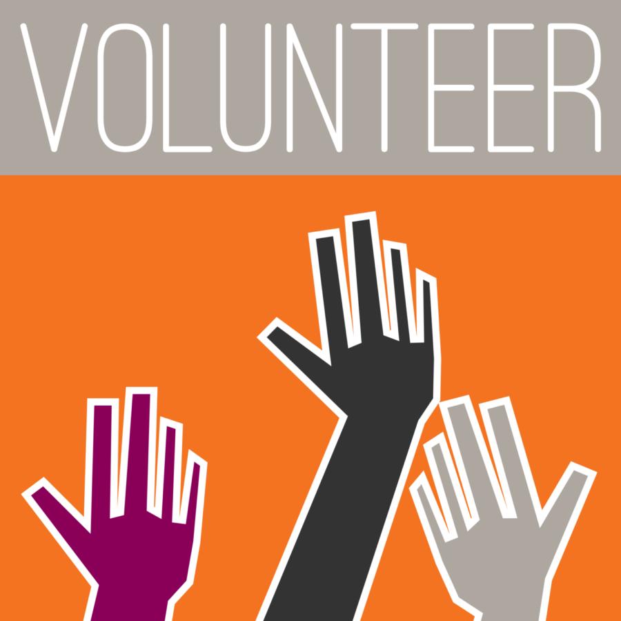 Volunteer Program!