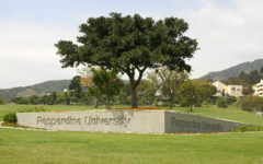 College Focus: Beach Views, Intense Education