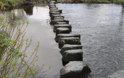 Custodian Steve's Encouraging Words (Stepping Stones) – Part 2