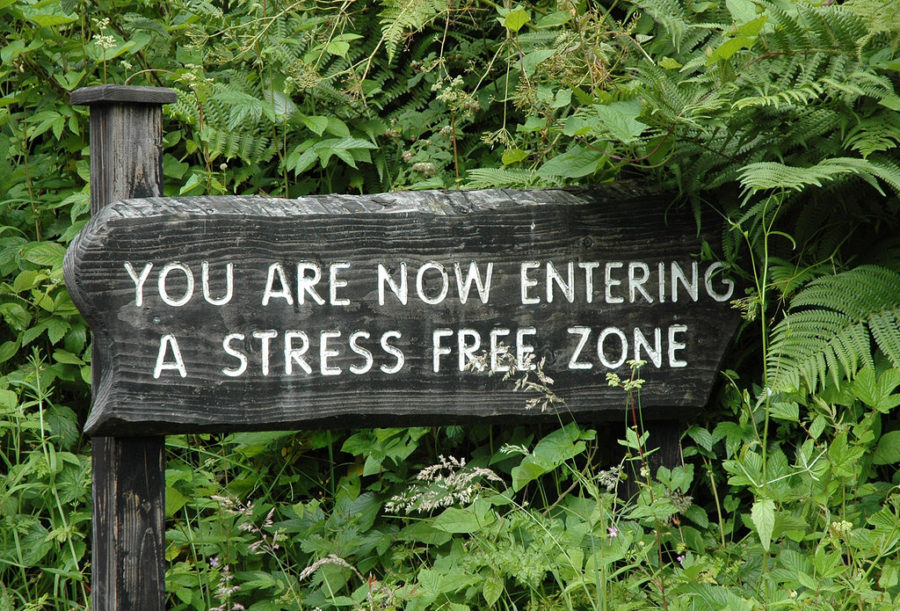 Stress-Free Week Starts Tuesday, December 11