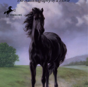 Book review: The story of a horse and of hope