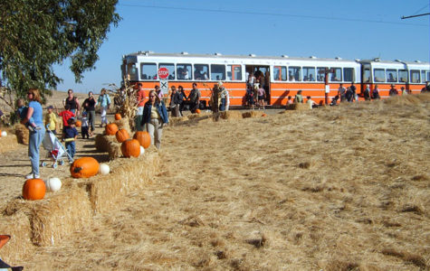 Pumpkin Patch Festival In Susiun Weekends through Oct.27