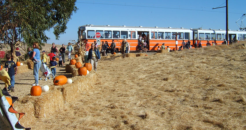 Pumpkin Patch Festival In Susiun Weekends through Oct.27