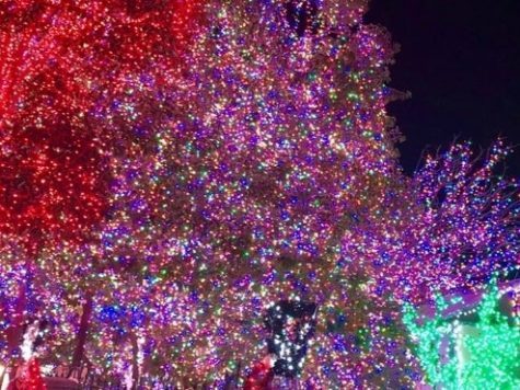 Fairfield Christmas Tree Lighting on December 6