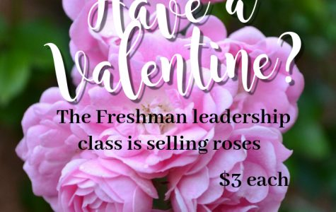 Support the Freshman Leadership class