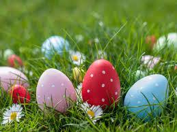 Family Easter Egg Hunt @Vacaville 4/11