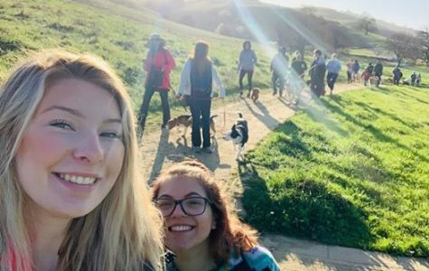 Pups on the Pena - Dog Walking Event May 31st