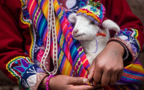 Learn about the history of Hispanic Heritage Month and ways you can celebrate!