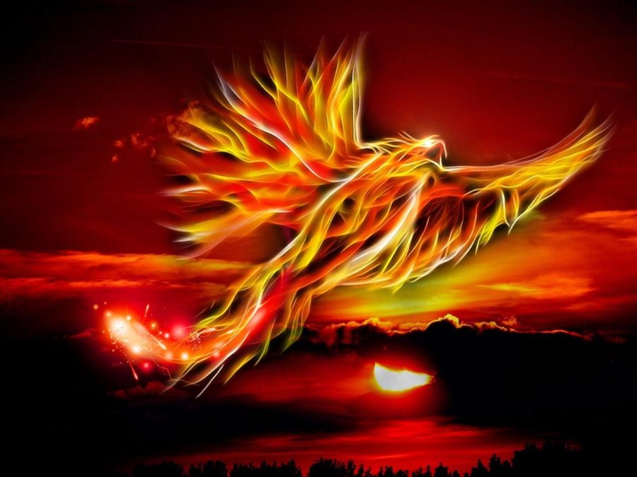 The Phoenix is integrated in many cultures and represents a symbolic meaning.