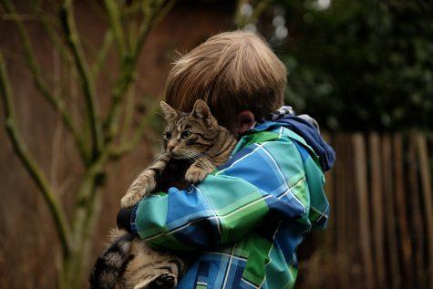 Hugs aren