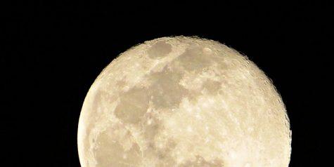 Virtual Stargazing - January 21