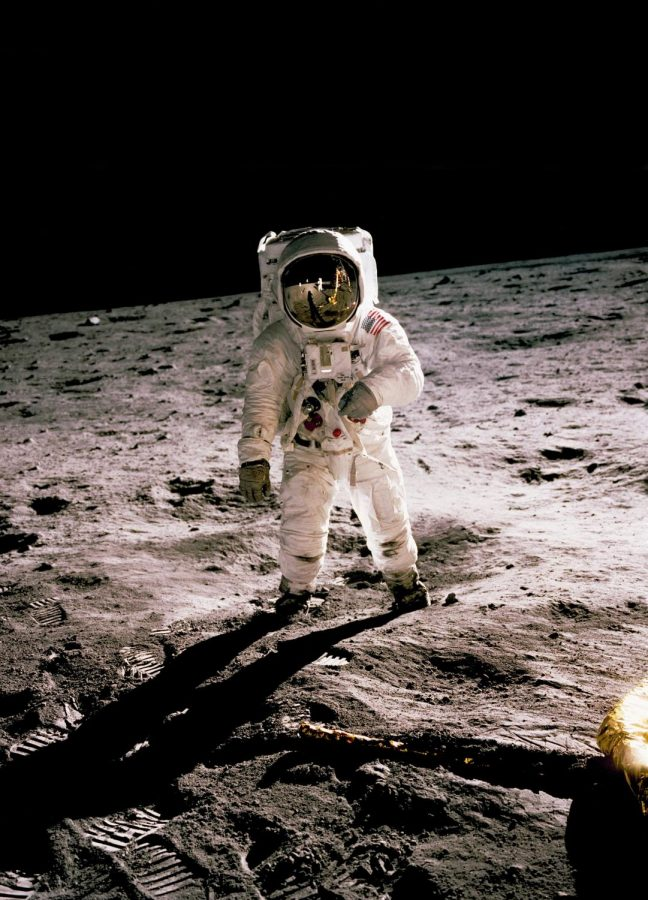 While+you+may+know+Neil+Armstrong+and+Apollo+11%2C+have+you+heard+of+the+animals+that+went+to+space%3F