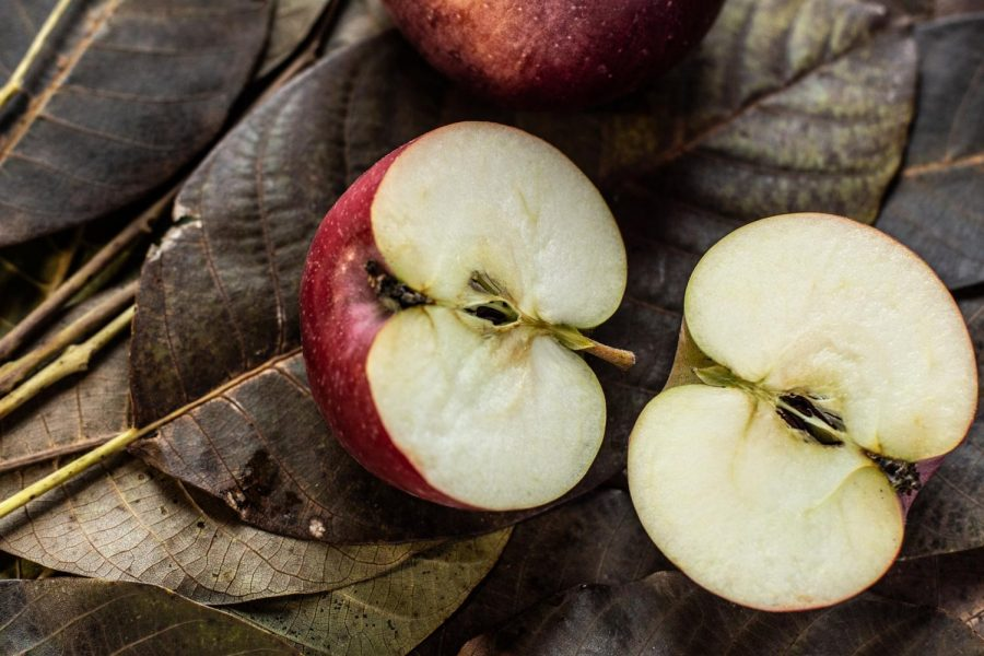 """""""Any fool can count the seeds in an apple. Only God can count all the apples in one seed.""""  Robert H Schuller"""