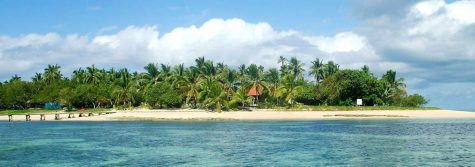 What Asian or Pacific Island country would you want to visit and why?