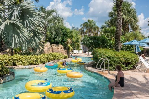 A lazy river or a crazy slide, you can find it all at a water park.