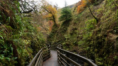 There are many places around the area to take nature walks. Keep reading to find out!