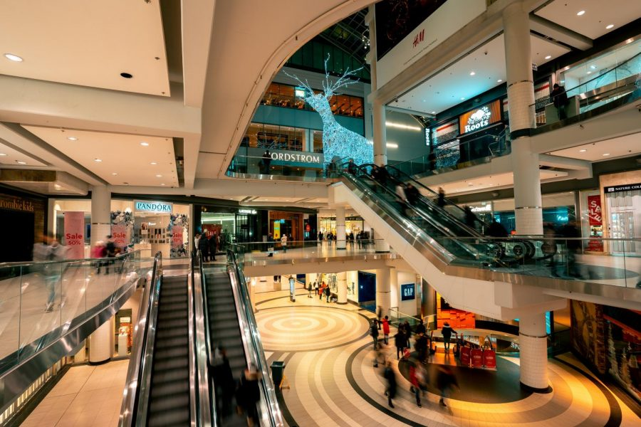 Shopping+can+be+a+lot+of+fun%2C+especially+when+picking+out+something+you+really+like%21