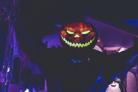 Time to get spooked! Dont act too scared though.